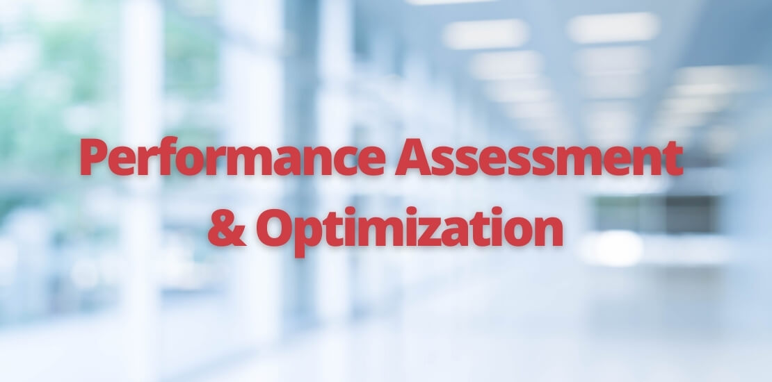 services - performance assesment
