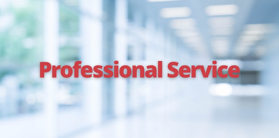 services - professional service